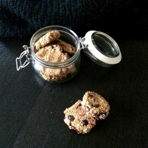 havermout koekjes met pompoen