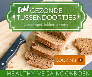 Healthy Vega - Tussendoortjes kookboek